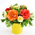 Summer Loving Paper Flowers