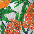 Vintage Retro Australian Banksias Wildflowers Cushion