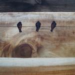 Wood Burnt Birds on a Wire Acacia Cutting Board