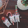 Christmas Candy Cane/Pencil/Gift Tags - set 12 - PERFECT CLASS GIFT