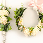Collar and leash set with champagne roses and eucalyptus.