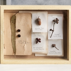 Botanical art, herbarium art, collage frame, handmade, Sandstone, small
