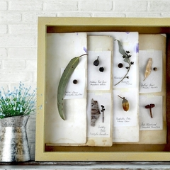 Botanical art, herbarium art, collage frame, handmade, Sandstone