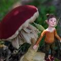 Picu - Forest Spirit