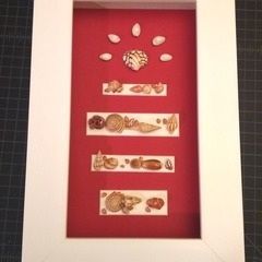 Red & White Sunrise Seashell Feature Frame Picture Original Feature Frame Art