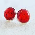 All that Glitters - Silver Plated Studs - Red