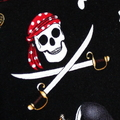 Padded Sunglasses Pouch in Skull and Cross Bone Pirate Fabric