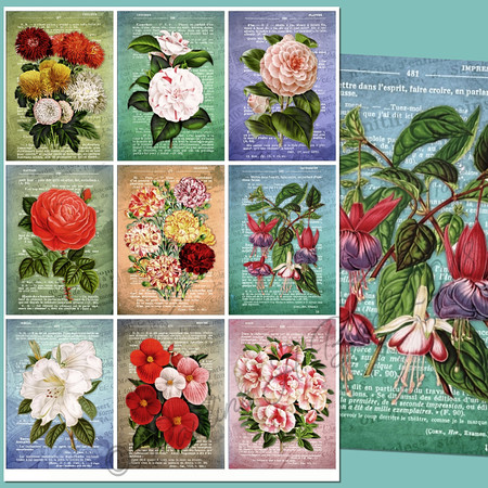 French Dictionary Vintage ATCs Printable