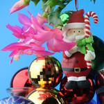 Christmas Cactus Santa Christmas card