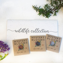 Wildlife Collection Flower Seed Kit, surprise garden gift
