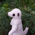 Meerkat soft toy, small size. Handmade knitted African animal softie