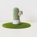 Mini Crochet Cactus with Pink Flowers in Cement Pot, Cactus Home Decor