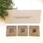 Summer Collection Flower Seed Kit, surprise garden gift