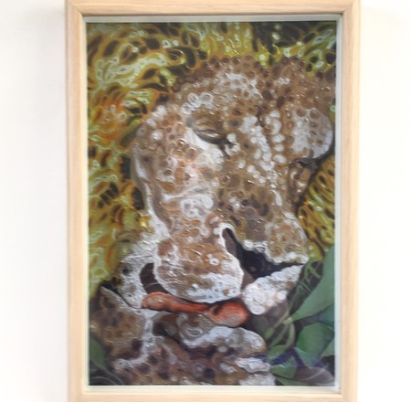 Framed art print of lion from original oil painting on high quality paper.