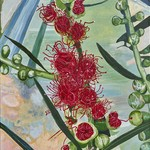 Callistemon Flower Medium Print