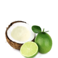 Lime and Coconut Scrub