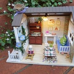 miniature house  and music box my dog''cody.