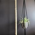 Plant hanger, macrame, cotton rope, black and jute trim.