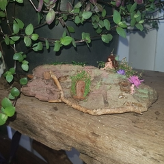 microscopic fairy ''sitting at her wooden house.''