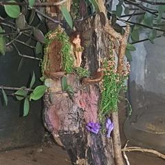 microscopic fairy ''standing  in her garden.''