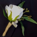 Ivory/White Silk Rose Buttonhole with Native Gumnuts and Eucalyptus Leaves