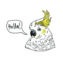 Cockatoo fabric wall sticker/decal