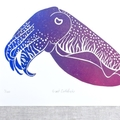 Giant Cuttlefish lino cut print / Marine Animal lino cut print