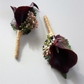 Burgundy Calla Buttonhole for Groom, Groomsman, Father, Brother Wedding Flowers