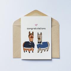 Congratulations Llama (3)