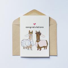 Congratulations Llama (1)