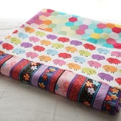 The Favourite Blanketcotton/minky baby blanket