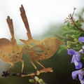 Fairy Wrens on a Branch Garden Decoration