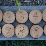 Wooden number discs