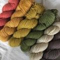 'Harvest' 5ply hand dyed superfine merino yarn
