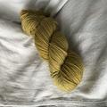'Pickles' 5ply hand dyed superfine merino yarn 100g/340m