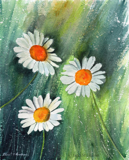 Daisies, Original Watercolour Floral painting,  Flowers, Gift Idea,