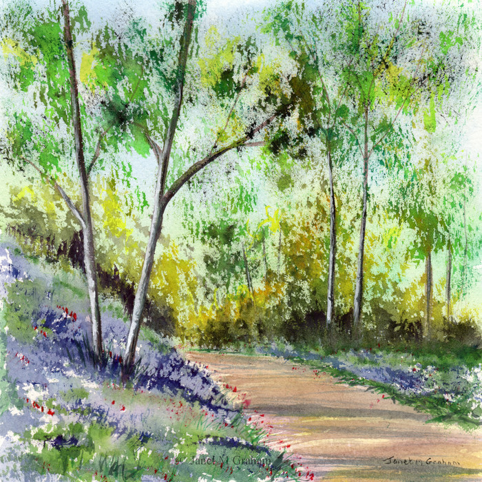 Bluebell Woods, Original Watercolour Landscape painting,  Flowers, Gift Idea,