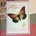 Rainbow Butterfly Thank You Card