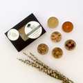 DISCOVERY BOX - Beeswax - Tea Lights - Mixed Box