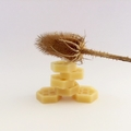 BUSH MELTS - Beeswax - Wax Melts