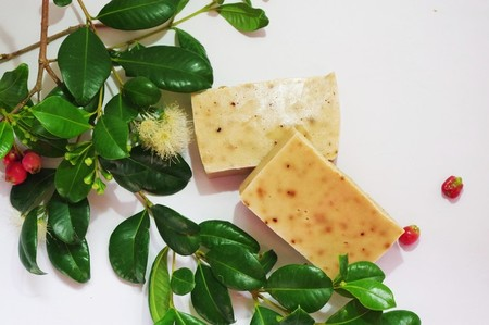 Lilly Pilly Soap