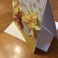 Birthday card. Feminine