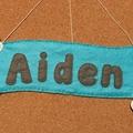 Plane Felt Name Banner