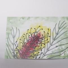 Australian Natives Blank Greeting Card - Grevillea - Bright Pink & Gold