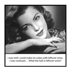 Funny Vintage Photo Magnet | Wine | Ice cubes with leftover wine