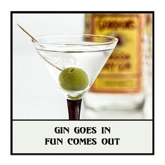 Magnet | Gin Lover Gift | Gin goes in, fun comes out