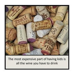Magnet | Alcohol Wine | Most expensive part of having kids