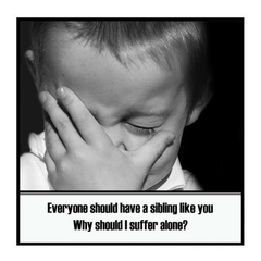 Funny Sibling Magnet | Gift for Brother Sister | Why should I suffer?