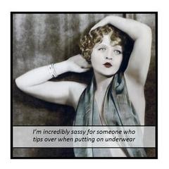 Funny Vintage Photo Magnet | Attitude | I'm incredibly sassy