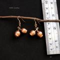 Real eucalyptus gum nut earrings - copper plated